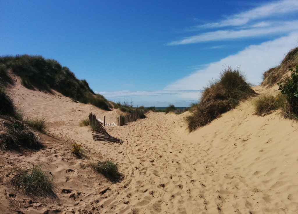 Formby sand dune