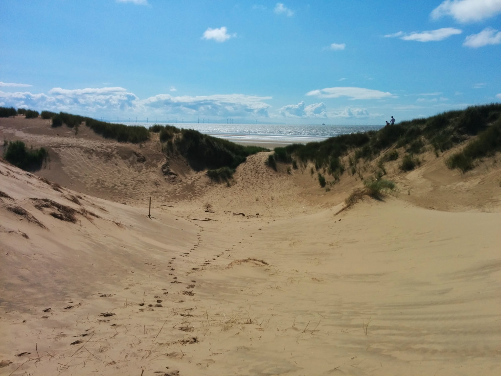 Formby sand dune 2