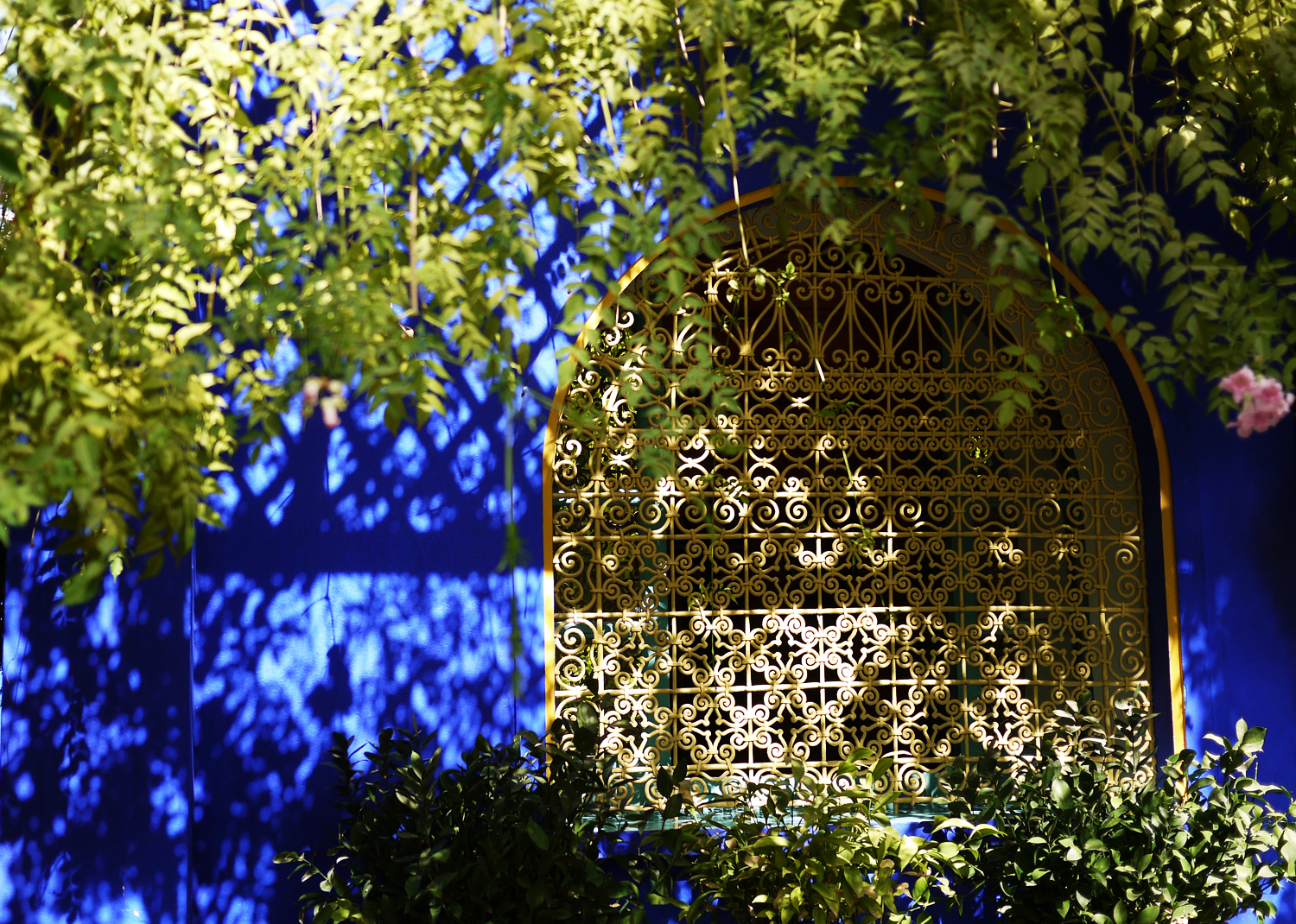 Marjorelle Window