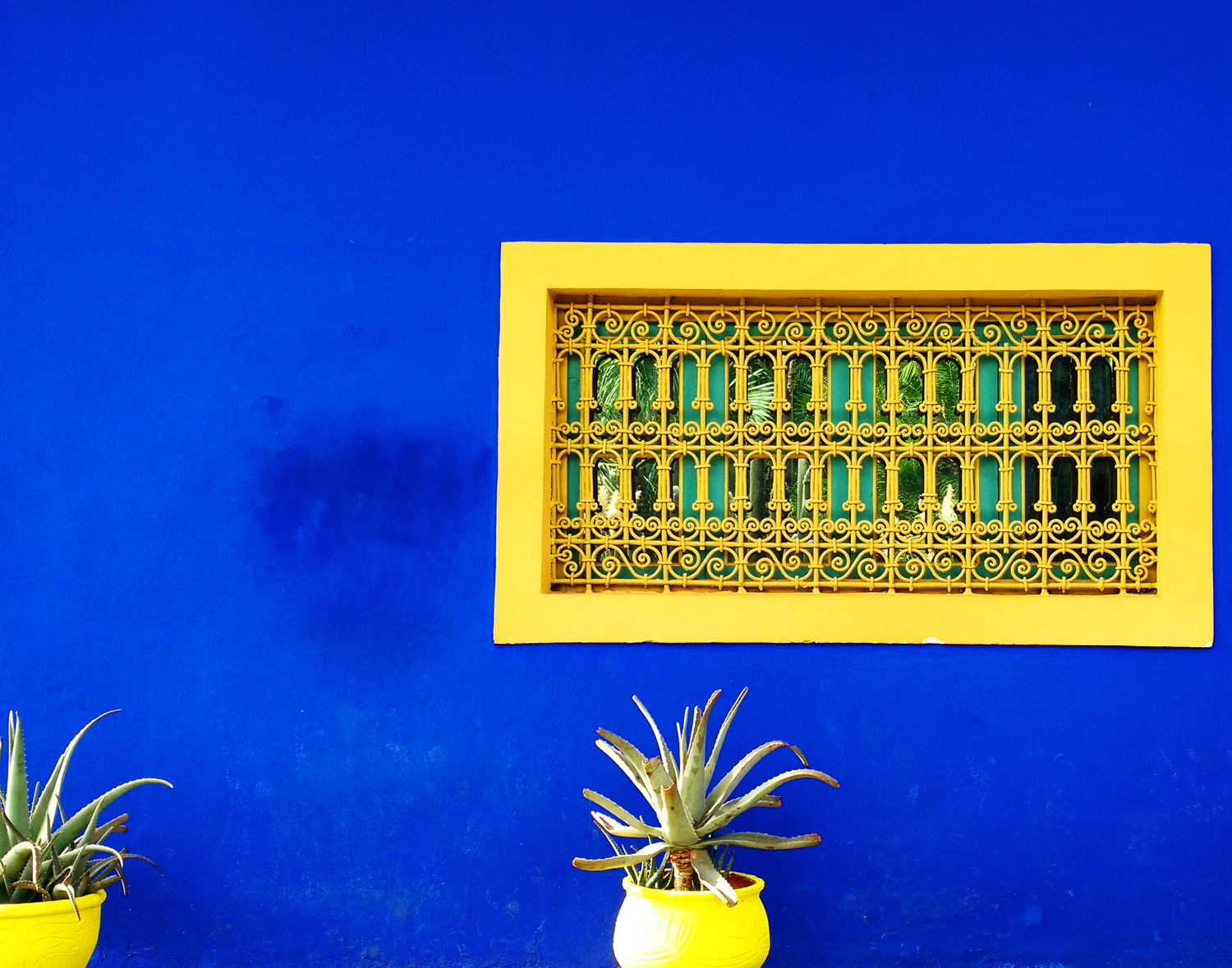Marjorelle wall and window
